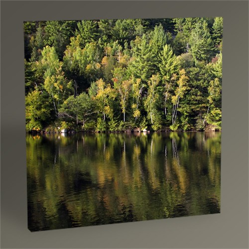 Tablo 360 Forest And Lake Iı Tablo 30X30