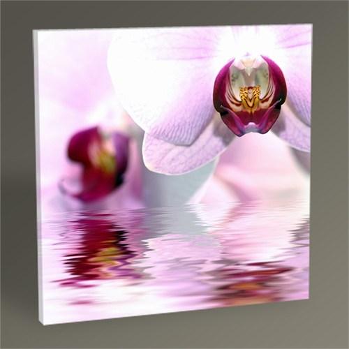 Tablo 360 Flowers Iı Tablo 30X30