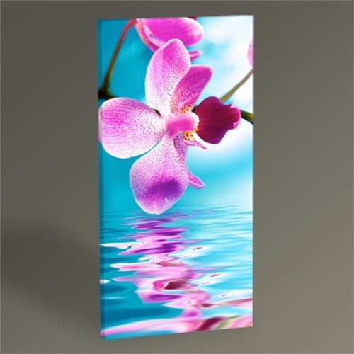 Tablo 360 Orchid Flower Tablo 60X30