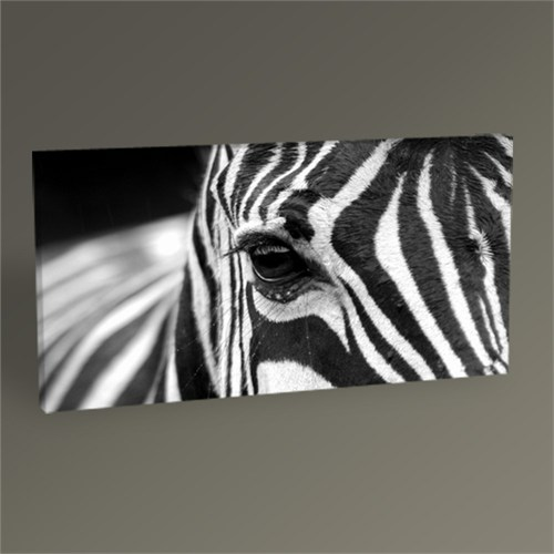 Tablo 360 Zebra Tablo 60X30