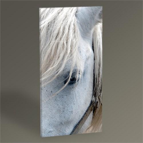 Tablo 360 White Horse Tablo 45X30