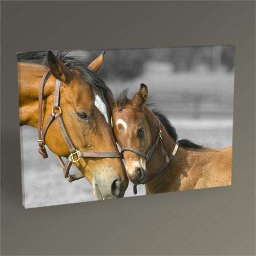 Tablo 360 Horses Tablo 45X30