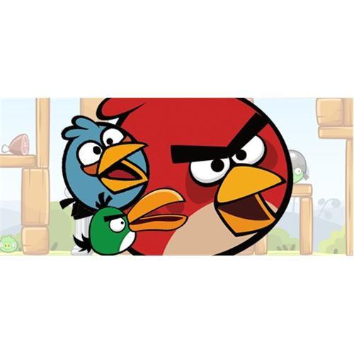 Angry Birds Doğum Günü Parti Seti Lüx