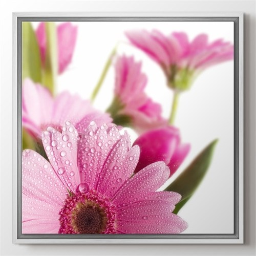Pluscanvas - Flower Tablo