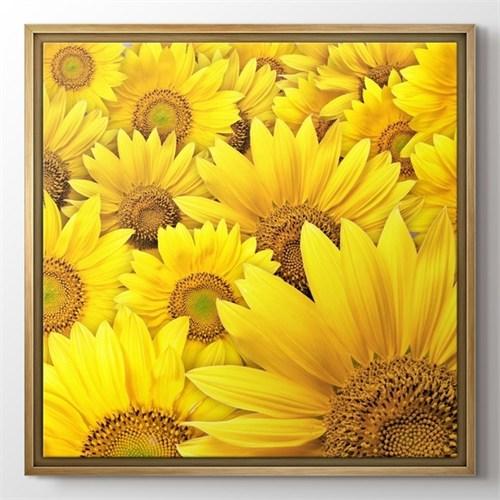 Pluscanvas - Sunflowers Tablo