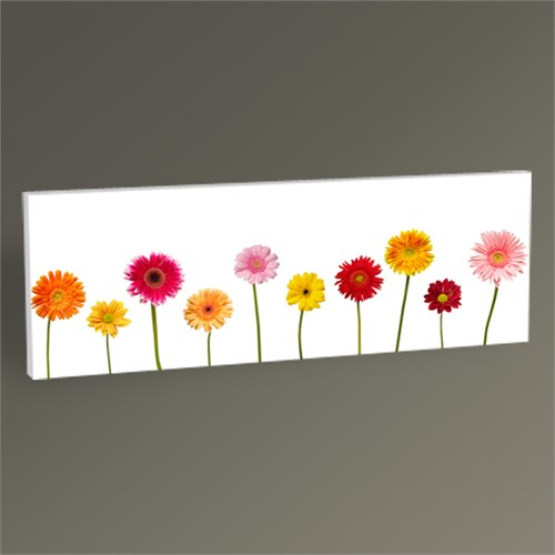 Tablo 360 Flowers Tablo 60X20