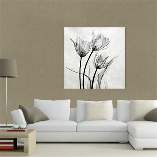 Atlantis Tablo çiçek 50X50 Cm