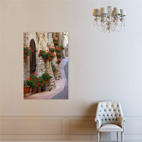 Atlantis Tablo Assisi Sokaklarında Sardunya Çiçekleri,İtalya 50X75 Cm