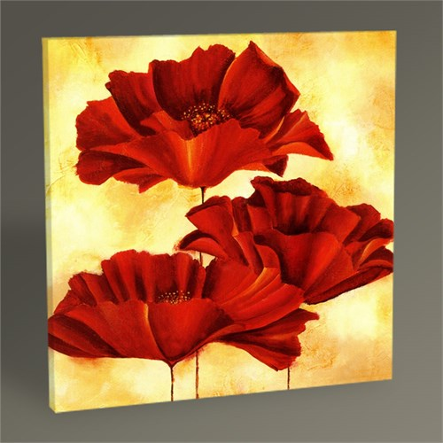 Tablo 360 Three Poppies Tablo 30X30