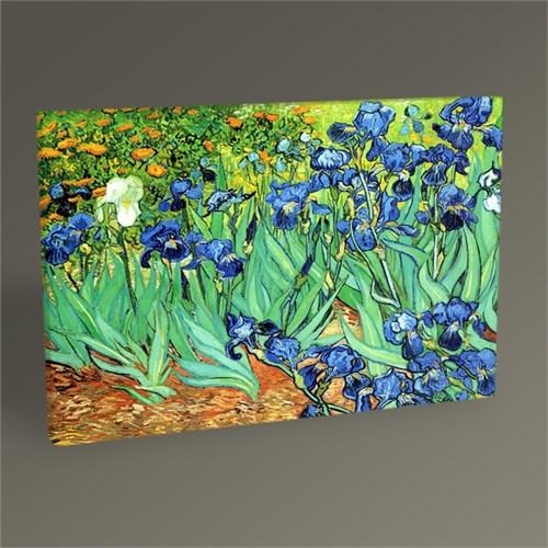 Tablo 360 Vincent Van Gogh Süsenler Tablo 45X30