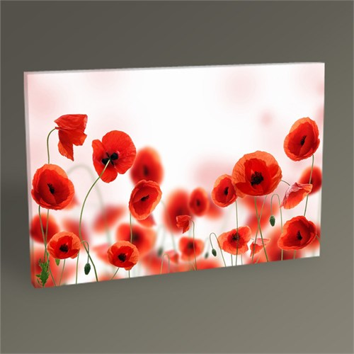 Tablo 360 Poppy Field Tablo 45X30