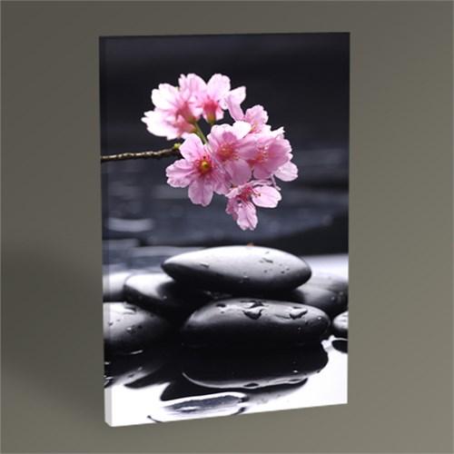 Tablo 360 Kiraz Çiçekleri Tablo 45X30