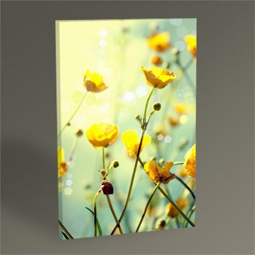 Tablo 360 Yellow Buttercup Flowers Iı Tablo 45X30