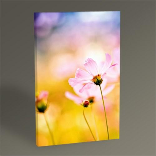 Tablo 360 Pink Flower Tablo 45X30