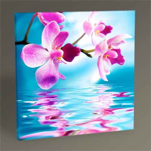 Tablo 360 Orchid Flowers Tablo 30X30