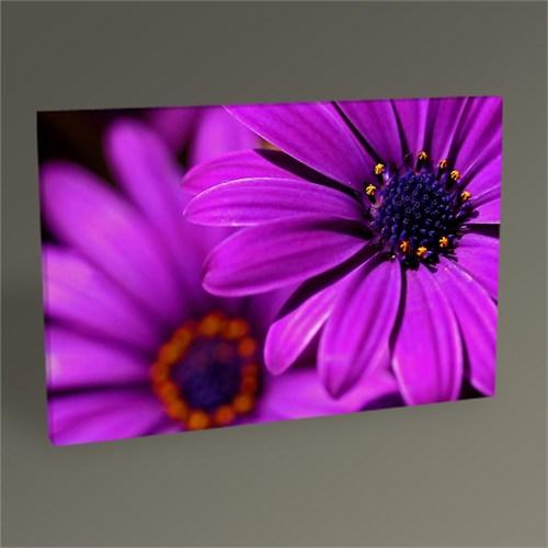 Tablo 360 Purple Flowers Tablo 45X30