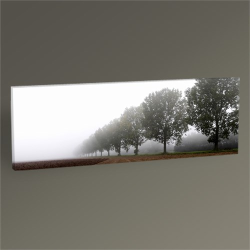 Tablo 360 Trees İn The Highland Tablo 60X20