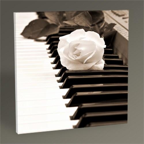 Tablo 360 Piano Tablo 30X30