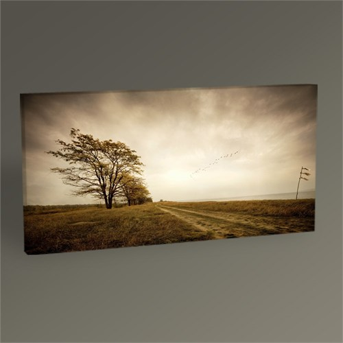 Tablo 360 Lonely Road Tablo 60X30