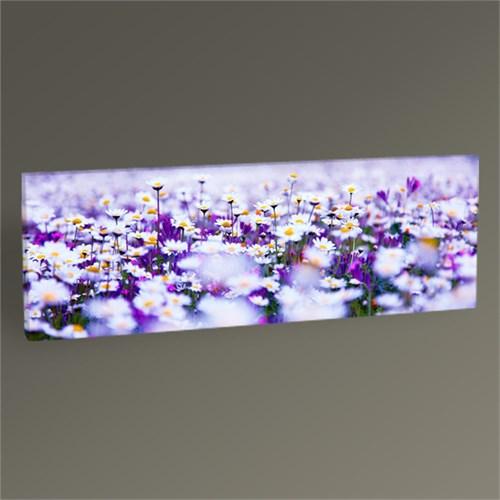 Tablo 360 Beyaz Papatlayalar Tablo 60X20