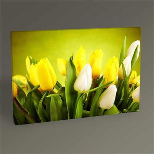 Tablo 360 Beyaz Ve Sarı Laleler Tablo 45X30