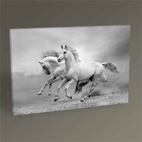 Tablo 360 Gümüş Rengi Atlar Tablo 45X30