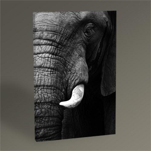 Tablo 360 Elephant Tablo 45X30