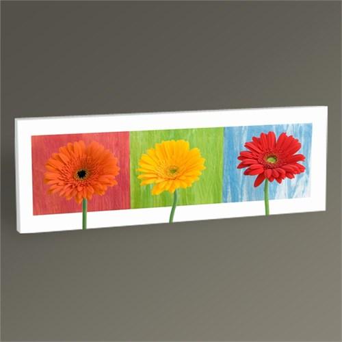 Tablo 360 Renkli Çiçekler Tablo 60X20