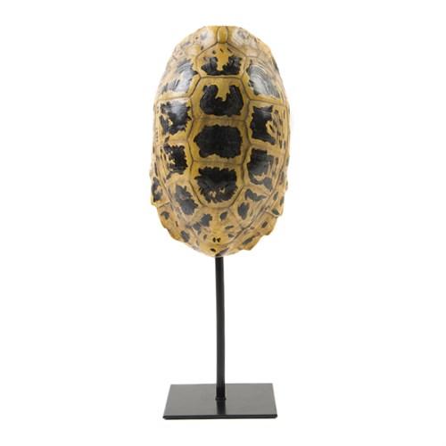 Yargıcı Dekoratif Kaplumbağa Kabuğu ( 13 X 11 X 34 Cm )