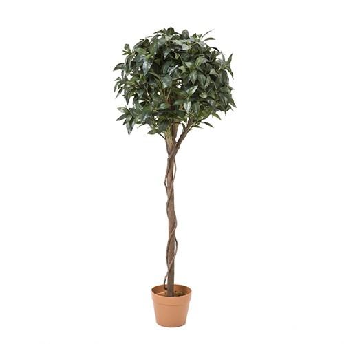 Yargıcı Yapay Defne Ağacı ( 135 X 23 X 23 Cm)
