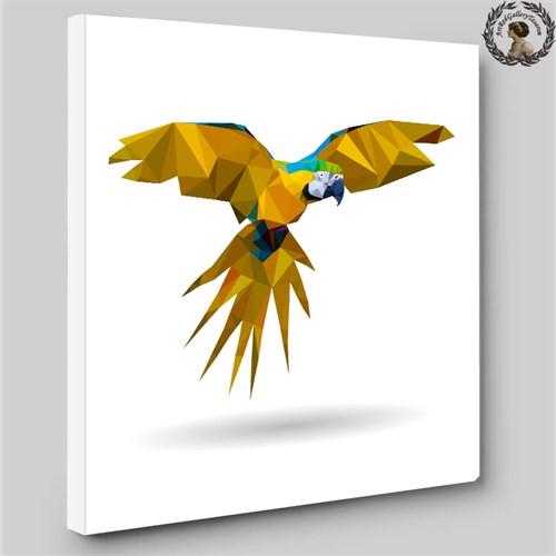 Artred Galleryİllüstrasyon Papağan Tablo 60X60