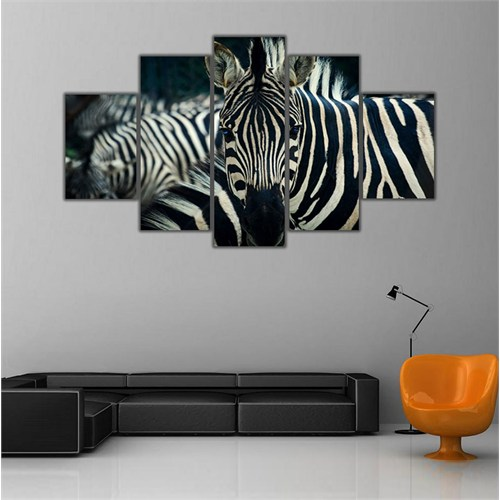 Ritmo Canvas Zebra Canvas Tablo