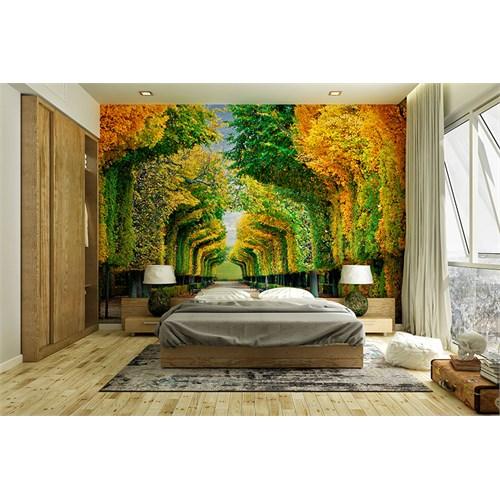 Iwall Resimli Ormanda Yürüyüş Duvar Kağıdı 180X250