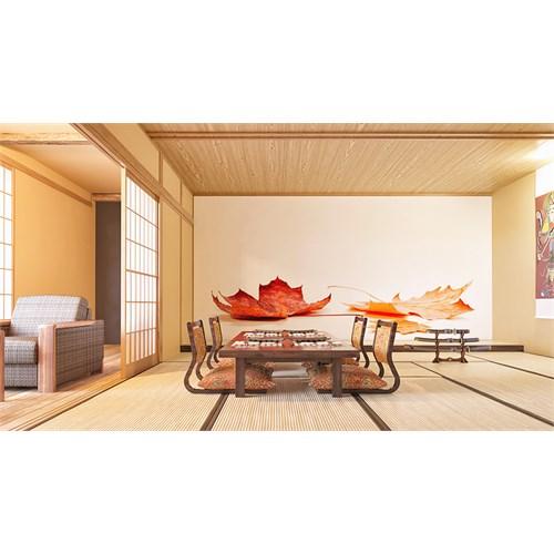Iwall Resimli Yapraklar Duvar Kağıdı 370X250