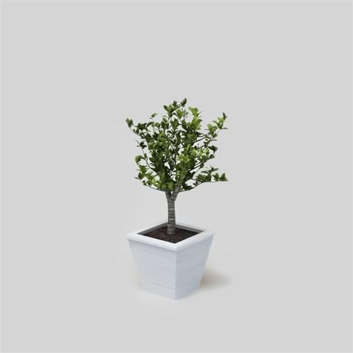 Onlywood Flower Vela Saksı Beyaz
