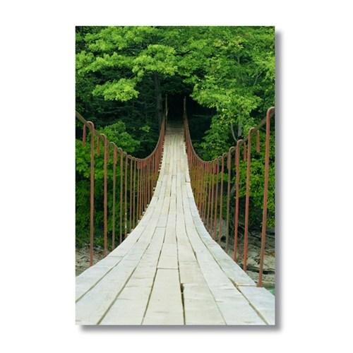 Ritmo-Orman Yürüyüşü Kanvas Tablo