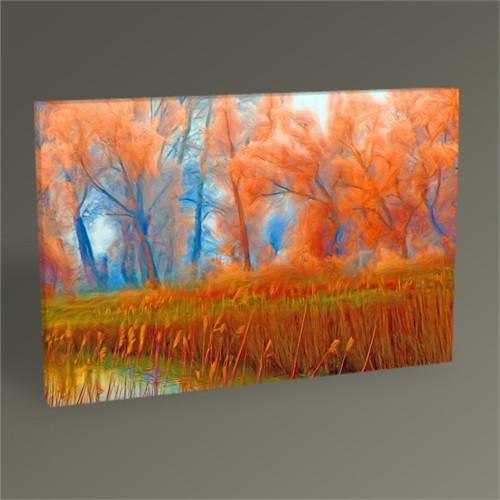 Tablo 360 Orman Peyzajı Tablo 45X30