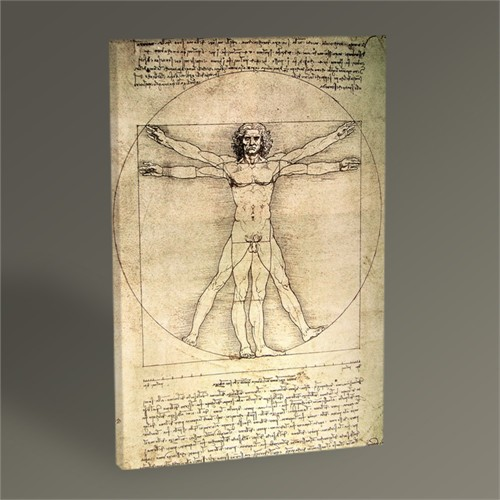 Tablo 360 Leonardo Da Vinci The Vitruvian Man 45X30