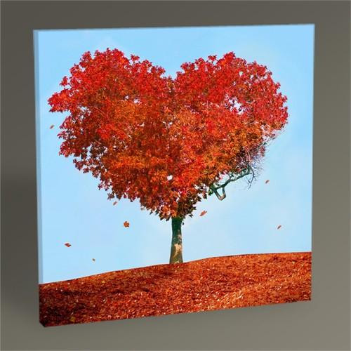 Tablo 360 Kalp Şeklinde Ağaç 30X30