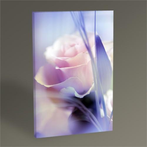 Tablo 360 Beautiful Flowers Tablo 45X30