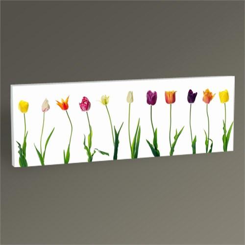 Tablo 360 Bahar Çiçekleri 60X20