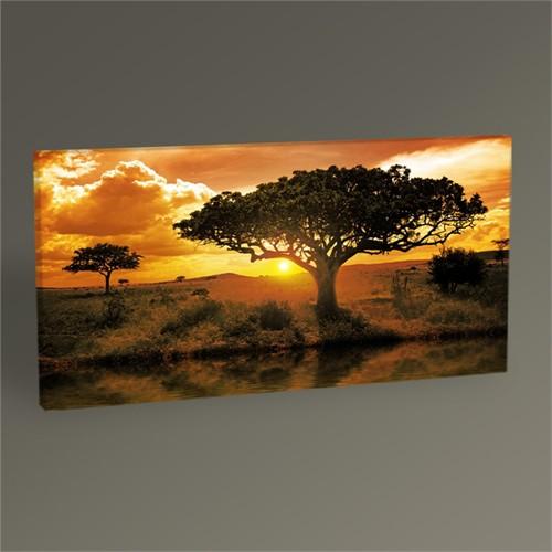 Tablo 360 Africa Landscape Iı Tablo 60X30