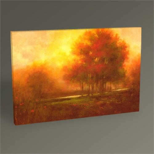 Tablo 360 Brown Silhouette Iı Tablo 45X30