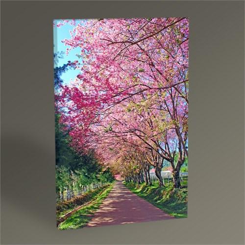 Tablo 360 Pink Flowers Tablo 45X30