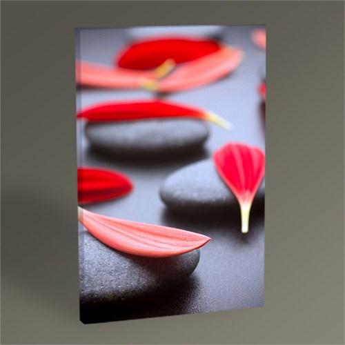 Tablo 360 Siyah Taş Ve Kırmızı Yapraklar 45X30