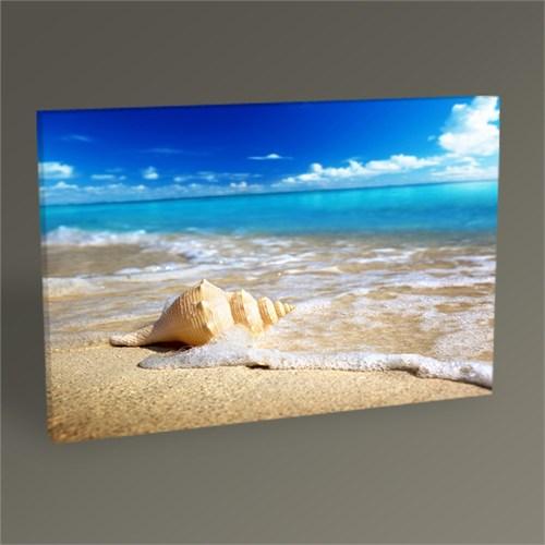 Tablo 360 Sea ??Objects V Tablo 45X30