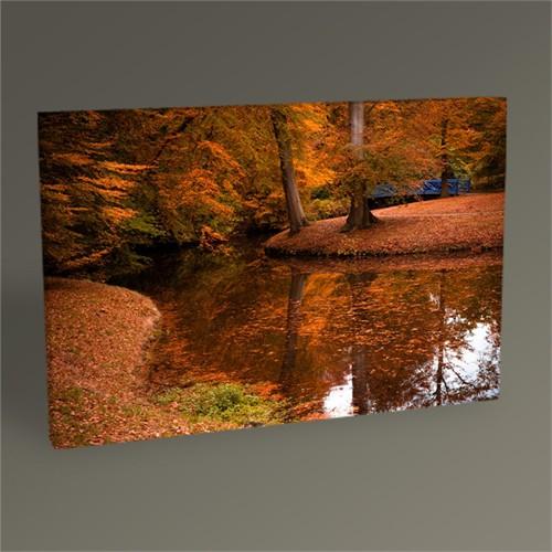 Tablo 360 Ormanda Sonbahar Renkleri Iı 45X30