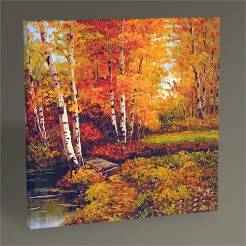 Tablo 360 Orman Manzarası Iı Tablo 30X30