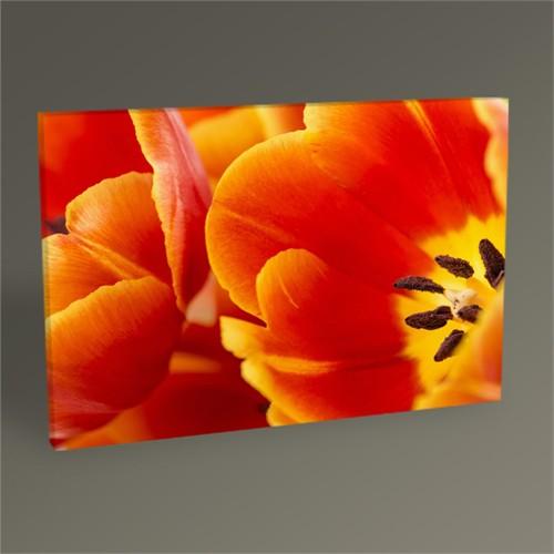 Tablo 360 Kırmızı Çiçek Tablo 45X30
