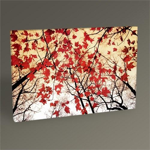Tablo 360 Red Maple Leaves Tablo 45X30